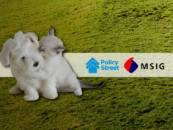 Malaysian Insurtech Firm Partners with MSIG to Protect Our Furry Friends