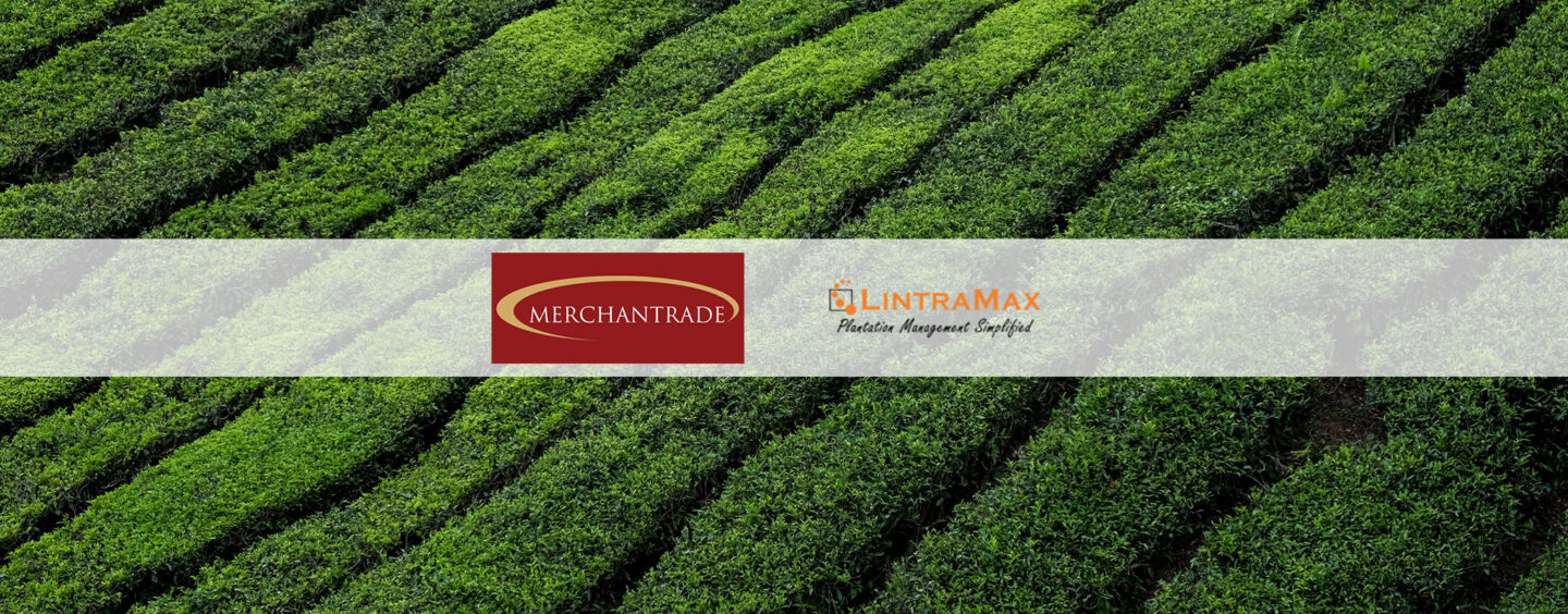 Merchantrade Rolls Out Payroll Solutions for Underbanked Plantation Workers
